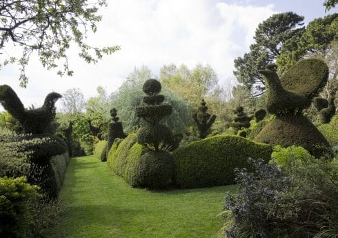 Suzie Gibbons © (Balmoral Cottage). A magical topiary garden created by artist Charlotte Molesworth. Yew Topiary birds, wedding-cake tiers and crowns, and wavy Buxus hedges frame enclosed grass  pathway.