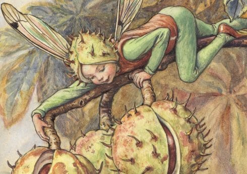 The Horse Chestnut Fairy (From the Flower Fairies of the Autumn, 1926)  © The Estate of Cicley Mary Barker